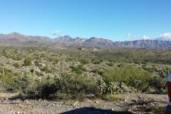 tailings site looking east